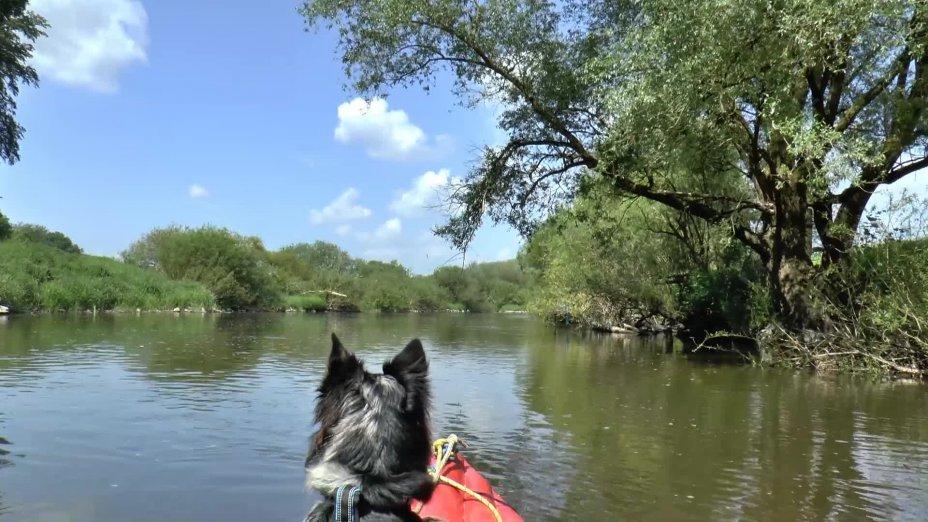 LAHN-Kanutour 2016 mit Hund und Zelt - Clip 1